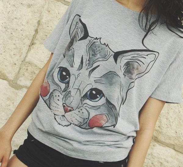 BMOT_cat